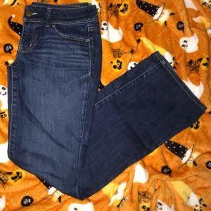 American Eagle Slim Boot Jean